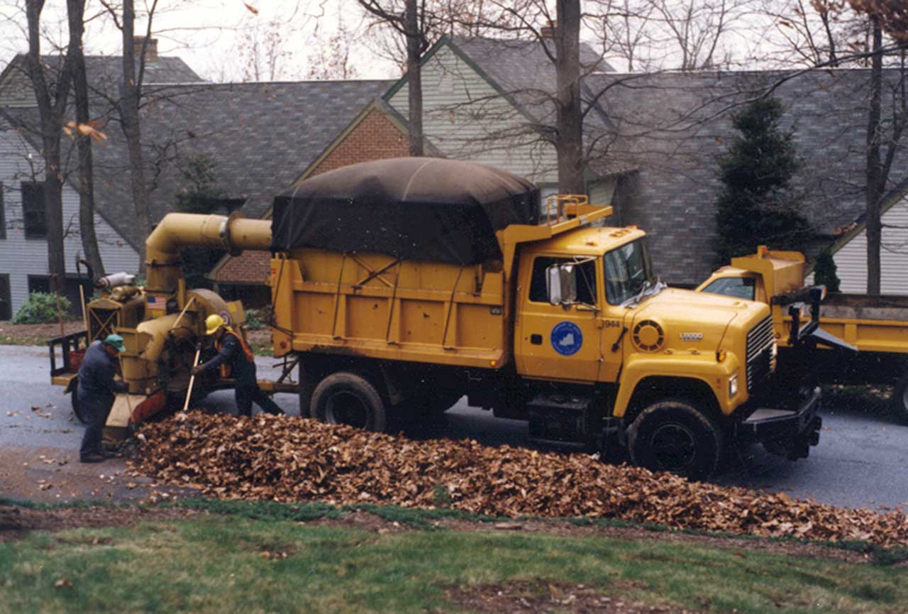 Leaf Collection, Derry Township